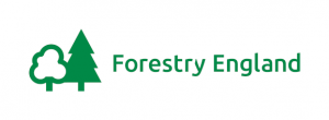 forestry-england-tuition-for-cameras